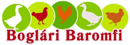 Boglári baromfi